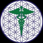 Medicina Biocibernetica
